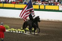 Carolina Classic Paso Fino Horse Show