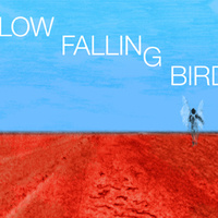 Slow Falling Bird