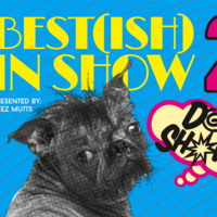 Best(ish) In Show! --- Dog Show @ Monument City Brewing Company