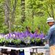 Native Plant Sale at Locust Grove Nature Center