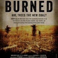 Environmental Film Festival: Inspiring Short Films