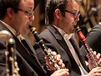 Clarinet Critical Mass