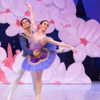 Minnesota Ballet Presents The Nutcracker