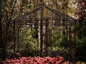 Tuesday Evening in the Garden: Mark Stokes