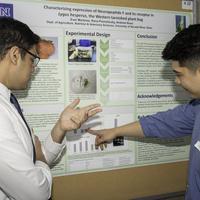 Biochemistry & Molecular Biology Senior Student Poster Presentations