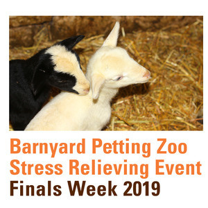 Barnyard Petting Zoo - Cancelled