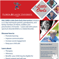 Little Owls: Early Intervention Initiative