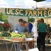 Farm and Garden Market Cart