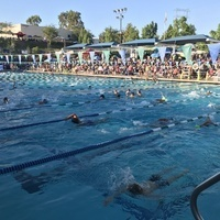 Swim League Finals Volunteers