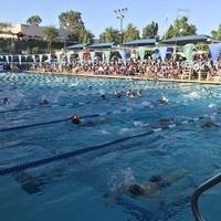 Swim League Finals Volunteers