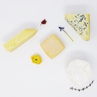 Cheese Talk & Tasting