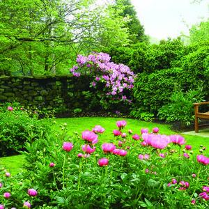 Goodstay Gardens Spring Garden Party