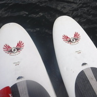 Stand-up Paddle Boarding Day Trip