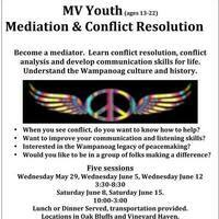 Youth Mediation Program