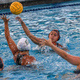 Water Polo Analytics Shooting and Goalie Camp