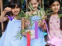 Tanabata: the Star Festival
