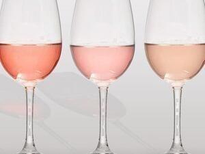Rose Wine Tasting
