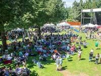 Second Annual Edgefield Brewfest