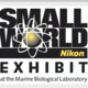 Exhibit: Nikon Small World