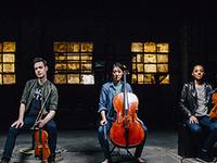 2019-20 Schneider Concerts Season - Argus String Quartet