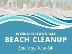 World Oceans Day Beach Cleanup with Love Beauty and Planet