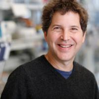 Biology Colloquium Series (Dr. David Baker)