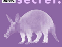Secret Aardvark Ride