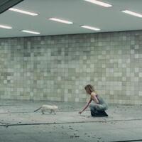 Big World, Big Screen: Summer Film Series