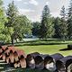 RISD/Boston deCordova Tour + Picnic in the Park