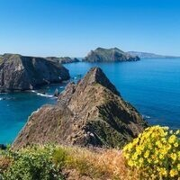 HOOT - Channel Islands National Park: Register by 9/3