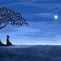Mindfulness-Based Self-Compassion Program: Introduction Session