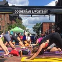 THE DISTILLERY FAMILY YOGA SERIES