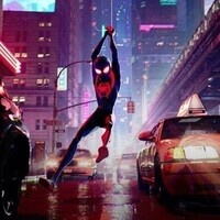 Spiderman: Into the Spider Verse (Family Film Series)