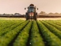 Initial Private Pesticide Applicator Training and Licensing Exam