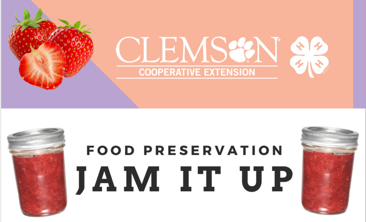 Jam It Up: Food Preservation