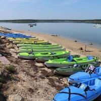 Demo Kayak & Paddleboard Safety Day
