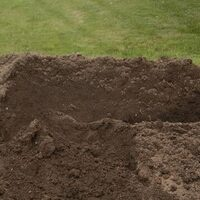 "Soil - The ""Dirty"" Little Secret to Successful Gardening"