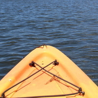 Guided Paddling Sessions on Salt Pond