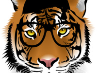 Tigers Teach with Shauna Chung