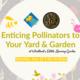 Enticing Pollinators to Your Yard & Garden