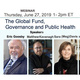 Webinar:  The Global Fund, Governance and Public Health