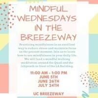 Mindful Wednesdays