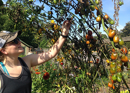 Sep 23, 2019: Harvest Sips and Samples: A Fall Equinox Tour at Pounder Vegetable Garden
