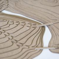 Landscape Architecture Design Foundation/English for Art and Design Course  Ends
