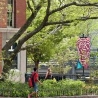 Summer 2019 Narratives of Student Progress Due