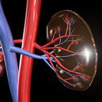 Internal Medicine Grand Rounds: Kidney Precision Medicine Project:  Scientific Foundation for Improving Care