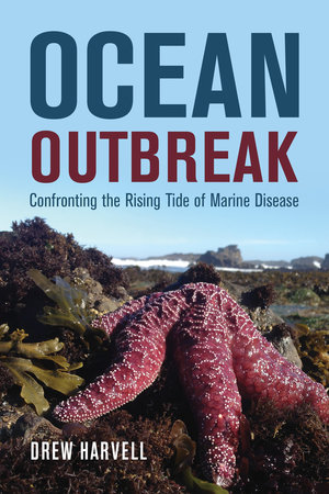 Chats in the Stacks: Drew Harvell on Ocean Outbreak: Confronting the Rising Tide of Marine Disease