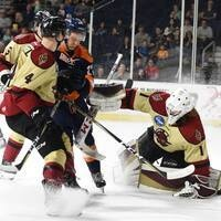 Atlanta Gladiators vs. South Carolina Stingrays