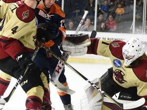 Atlanta Gladiators vs. Greenville Swamp Rabbits