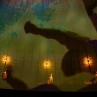 Fringe Festival: The Fragile Corridor